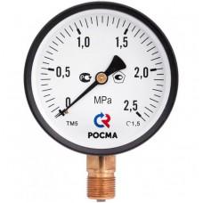 РОСМА ТМ-510P.00(0-1,0MРа)G1/2.1,5.M2 Манометр диам. 100 мм; тип ТМ; серия 10; модель 2; кт 1,5; IP40; G 1/2; 0-1,0МРа.
