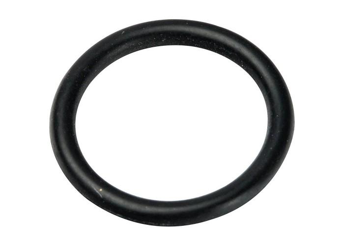 Prandelli Multyrama Уплотнительное кольцо (20х2,0) в комплекте 10 шт . в Белгороде